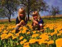 Familienurlaub Deutschland Familien Reisen Kinder